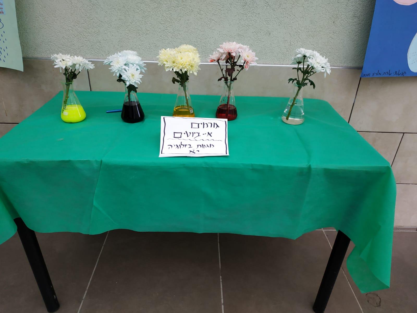 נסיוי פרחים צבעוניים